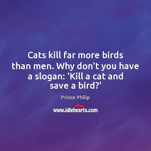 Cats kill far more birds than men. Why don't you have a Image