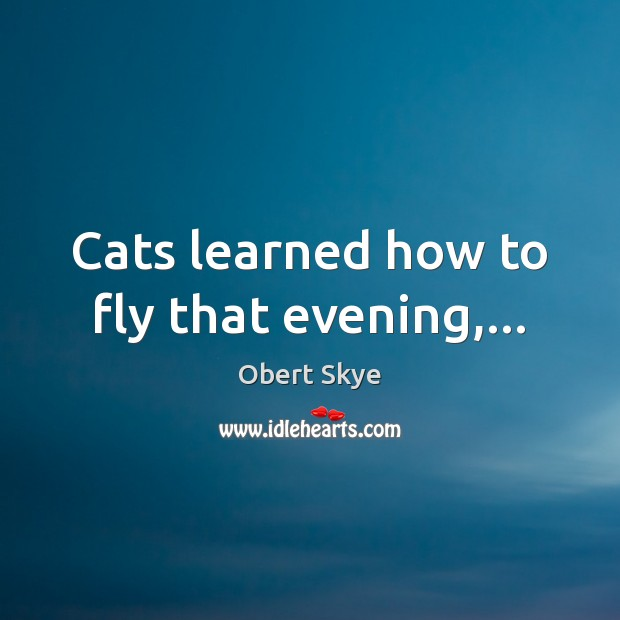 Cats learned how to fly that evening,… Image