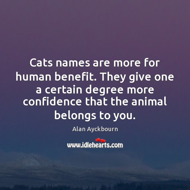 Image, Cats names are more for human benefit. They give one a certain