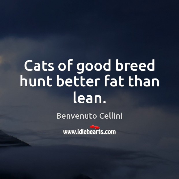 Image, Cats of good breed hunt better fat than lean.