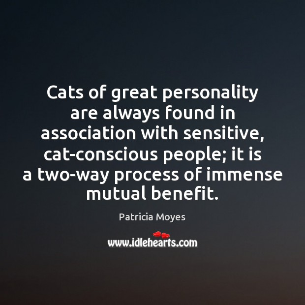Cats of great personality are always found in association with sensitive, cat-conscious Image