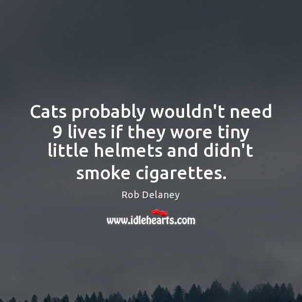Rob Delaney Picture Quote image saying: Cats probably wouldn't need 9 lives if they wore tiny little helmets and