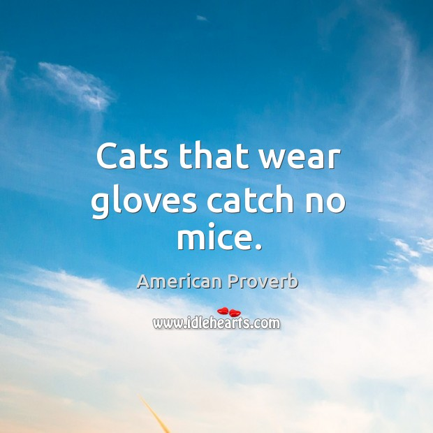 Image, Cats that wear gloves catch no mice.