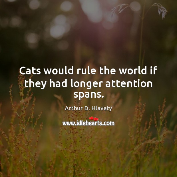 Image, Cats would rule the world if they had longer attention spans.