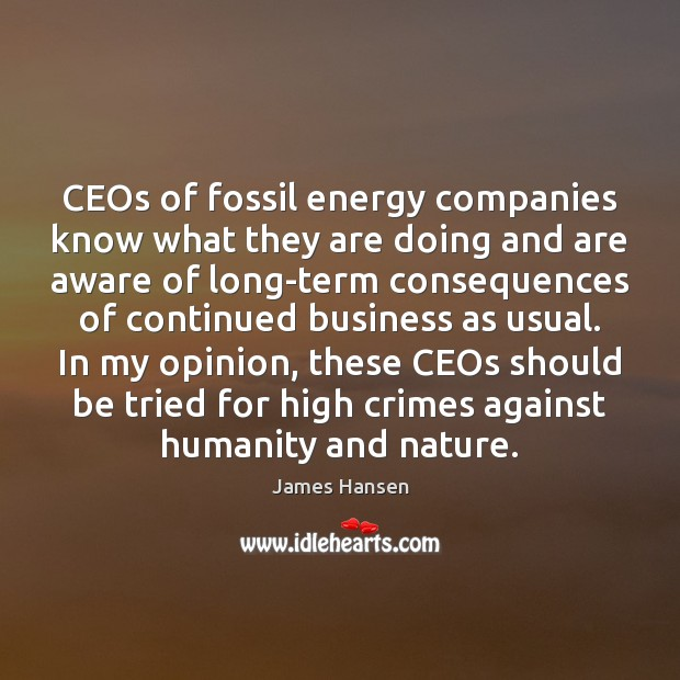CEOs of fossil energy companies know what they are doing and are Image
