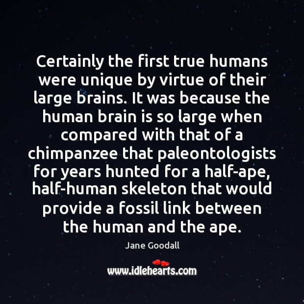 Certainly the first true humans were unique by virtue of their large Jane Goodall Picture Quote