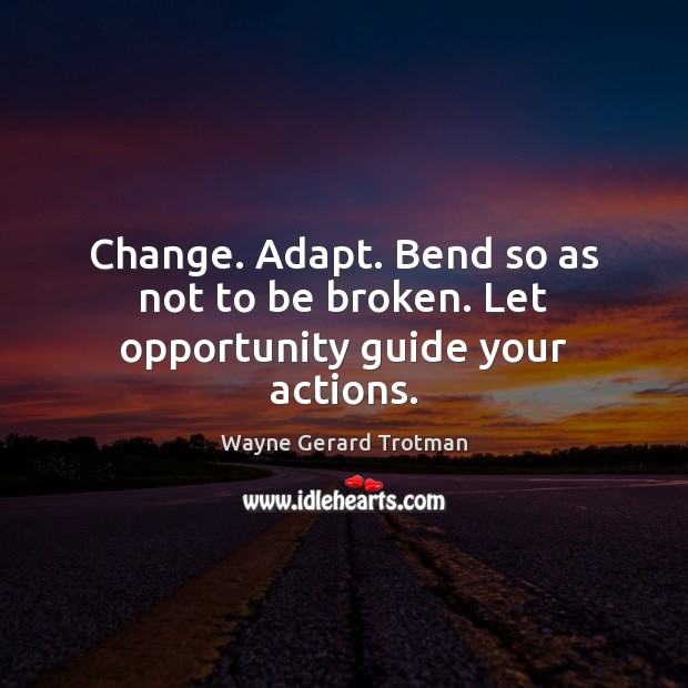 Change. Adapt. Bend so as not to be broken. Let opportunity guide your actions. Wayne Gerard Trotman Picture Quote