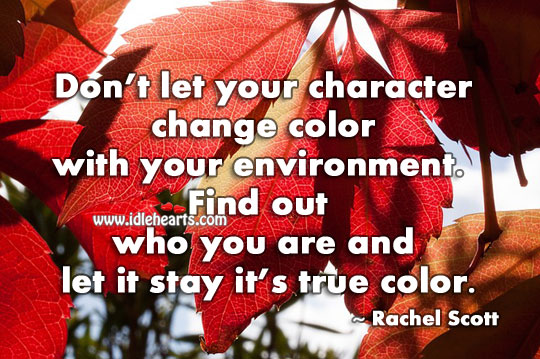 Don't let your character change color with your environment. Environment Quotes Image