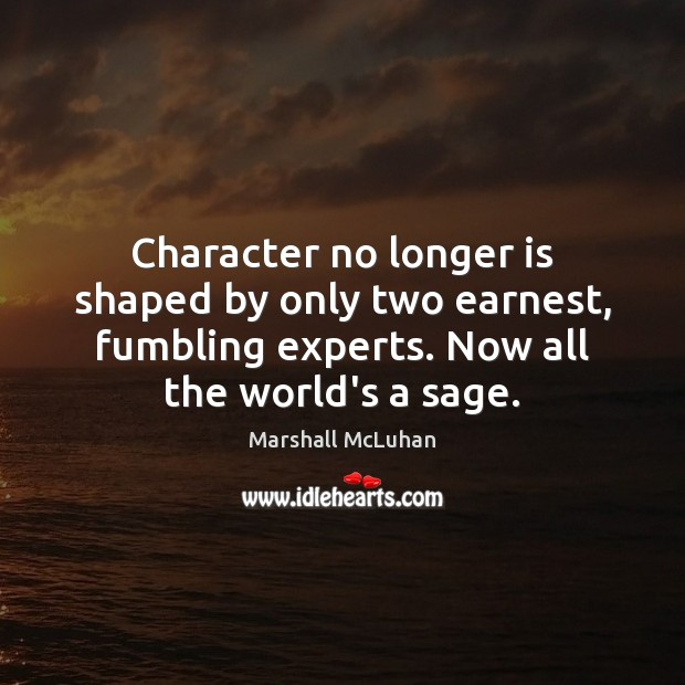 Character no longer is shaped by only two earnest, fumbling experts. Now Image