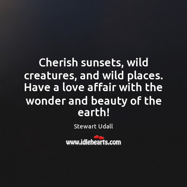 Image, Cherish sunsets, wild creatures, and wild places. Have a love affair with