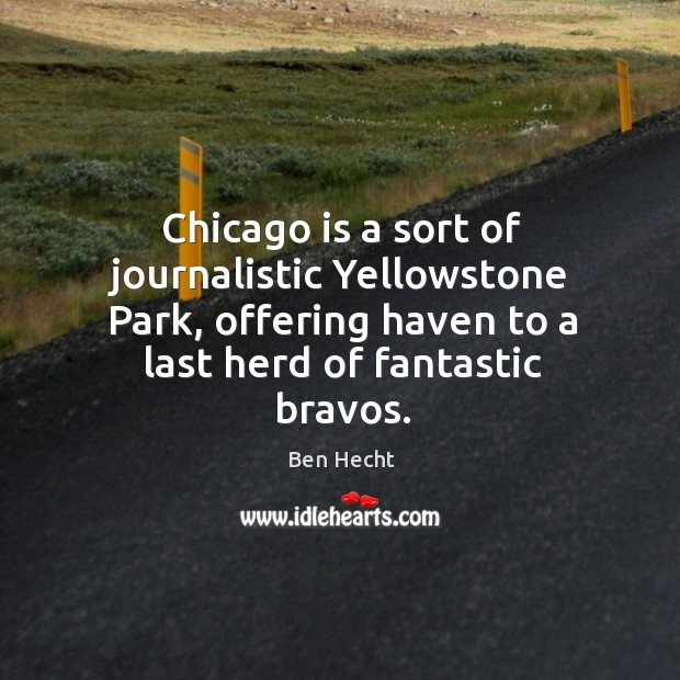 Image, Chicago is a sort of journalistic yellowstone park, offering haven to a last herd of fantastic bravos.