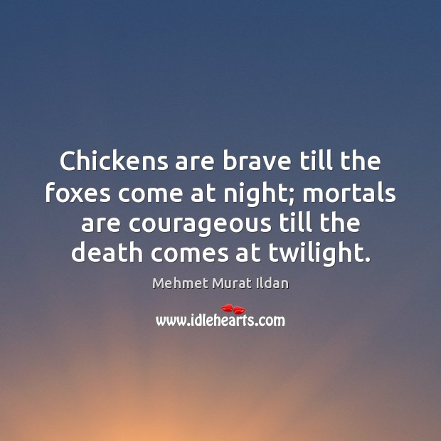 Image about Chickens are brave till the foxes come at night; mortals are courageous