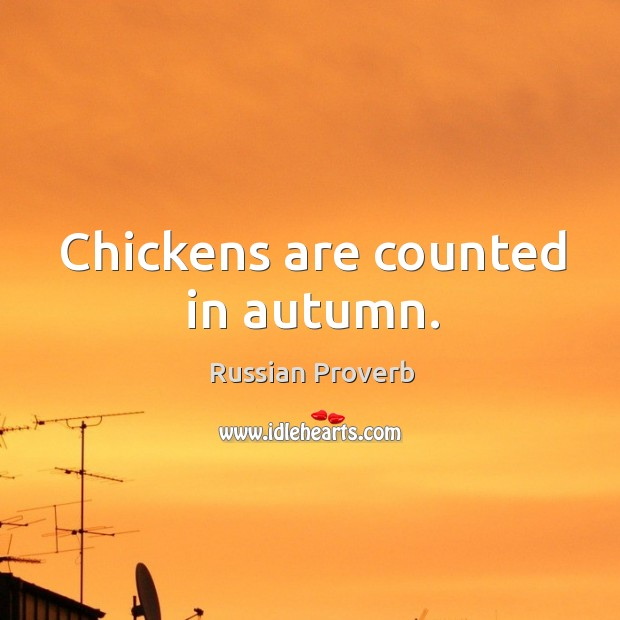 Image, Chickens are counted in autumn.
