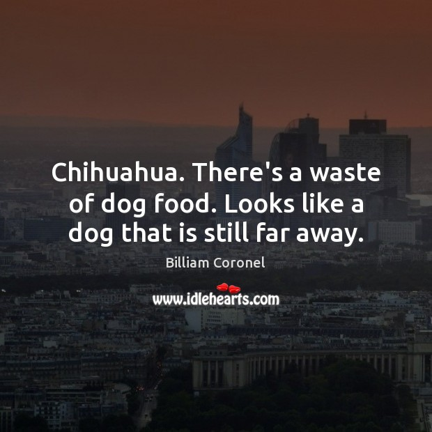 Image, Chihuahua. There's a waste of dog food. Looks like a dog that is still far away.
