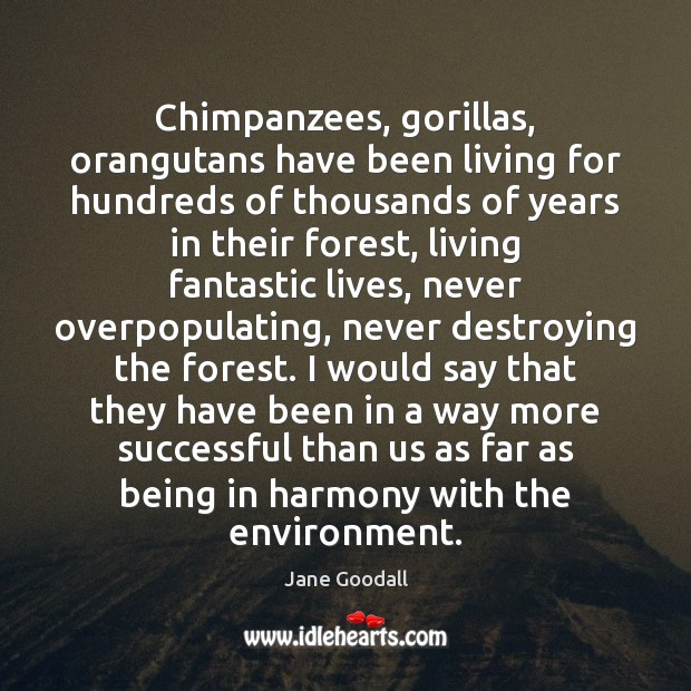Chimpanzees, gorillas, orangutans have been living for hundreds of thousands of years Jane Goodall Picture Quote