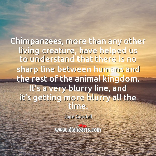 Chimpanzees, more than any other living creature, have helped us to understand Jane Goodall Picture Quote