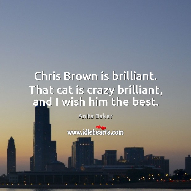 Chris Brown is brilliant. That cat is crazy brilliant, and I wish him the best. Image