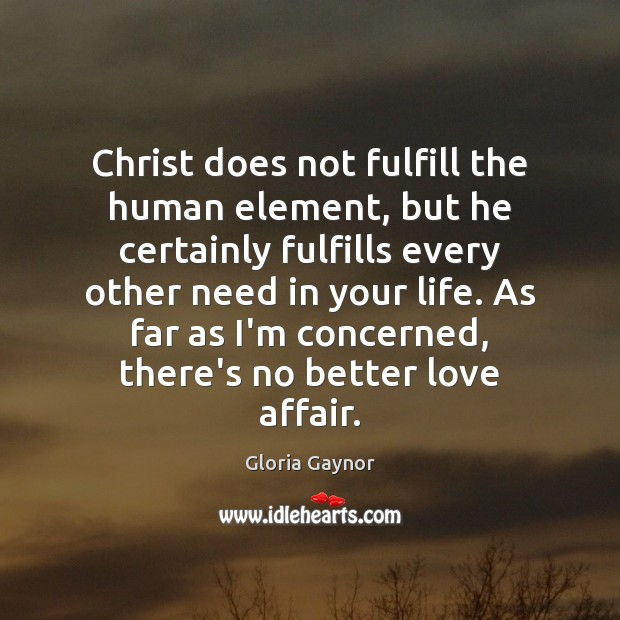 Christ does not fulfill the human element, but he certainly fulfills every Image