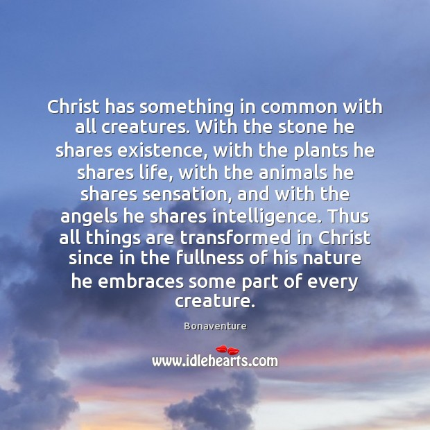 Image, Christ has something in common with all creatures. With the stone he