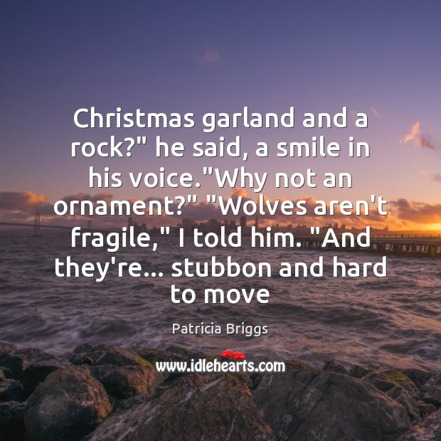 """Christmas garland and a rock?"""" he said, a smile in his voice."""" Image"""
