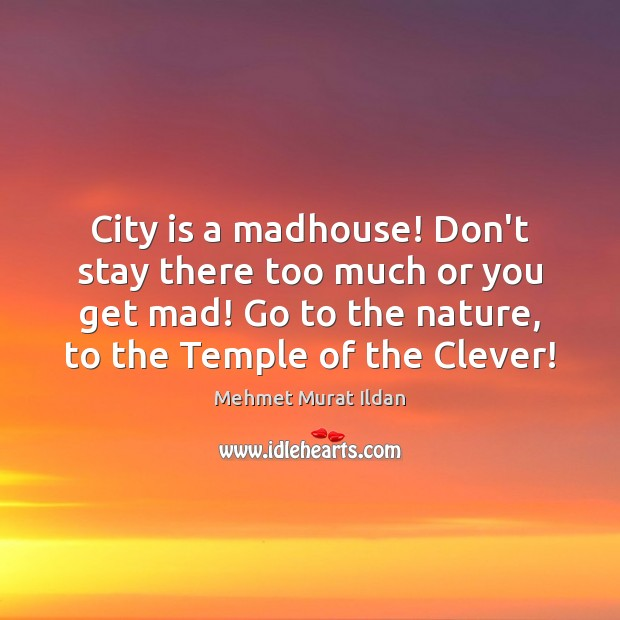 City is a madhouse! Don't stay there too much or you get Clever Quotes Image