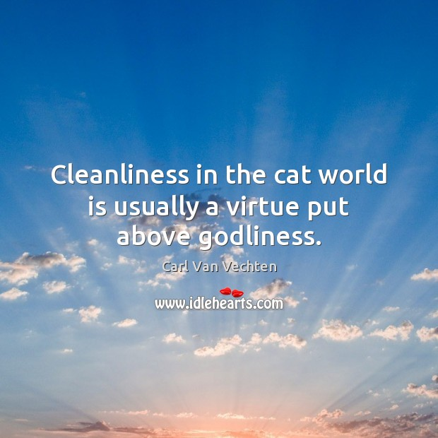 Carl Van Vechten Picture Quote image saying: Cleanliness in the cat world is usually a virtue put above Godliness.