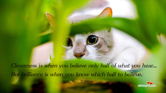 Cleverness is when you believe only half of what you hear. Image