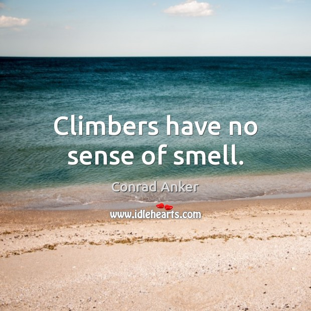 Climbers have no sense of smell. Conrad Anker Picture Quote