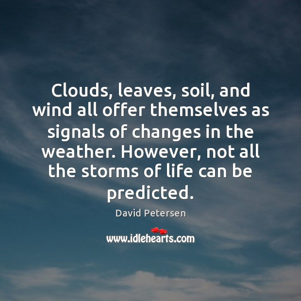 Clouds, leaves, soil, and wind all offer themselves as signals of changes Image