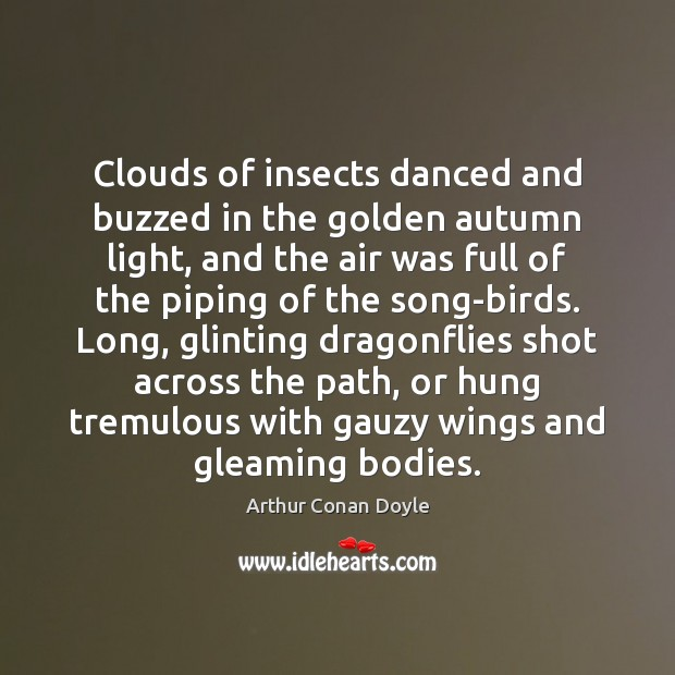 Clouds of insects danced and buzzed in the golden autumn light, and Arthur Conan Doyle Picture Quote