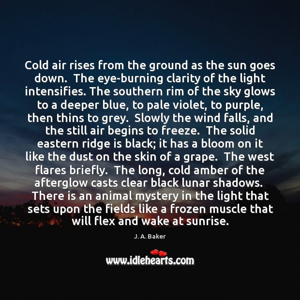 Image, Cold air rises from the ground as the sun goes down.  The