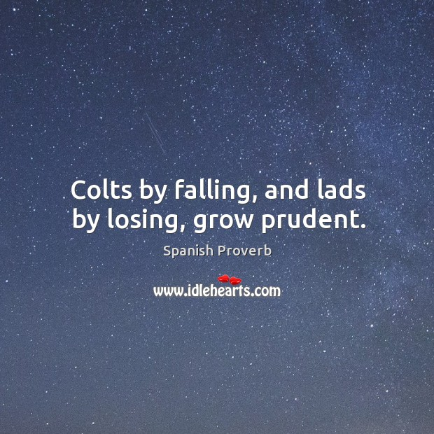 Colts by falling, and lads by losing, grow prudent. Spanish Proverbs Image