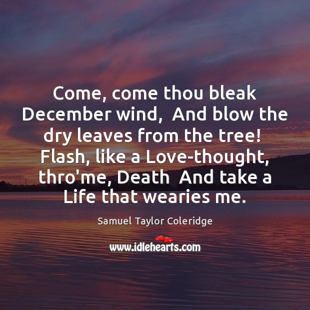 Image, Come, come thou bleak December wind,  And blow the dry leaves from