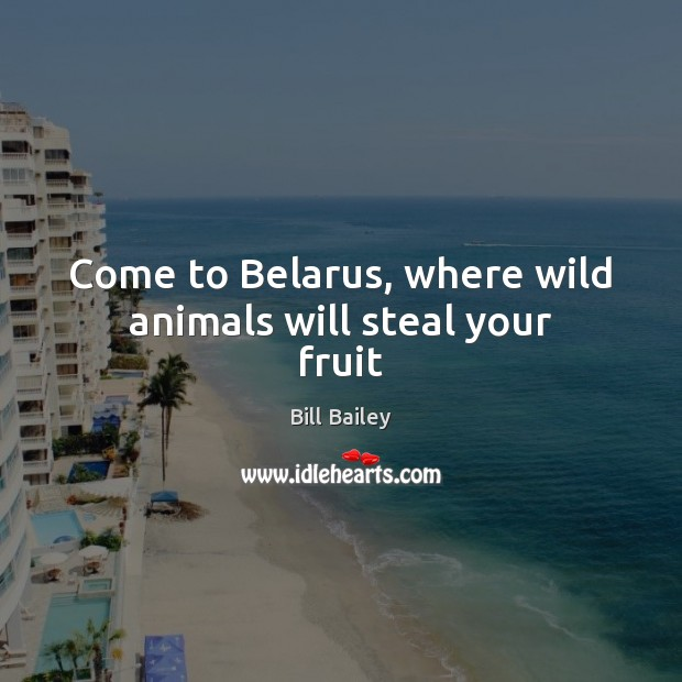 Image, Come to Belarus, where wild animals will steal your fruit