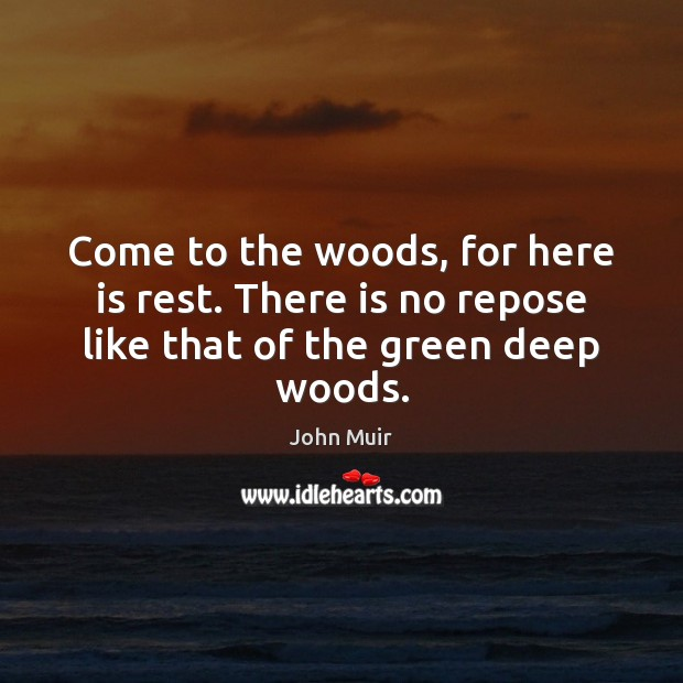 Come to the woods, for here is rest. There is no repose like that of the green deep woods. John Muir Picture Quote
