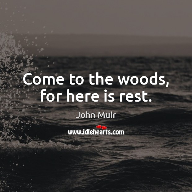 Come to the woods, for here is rest. John Muir Picture Quote