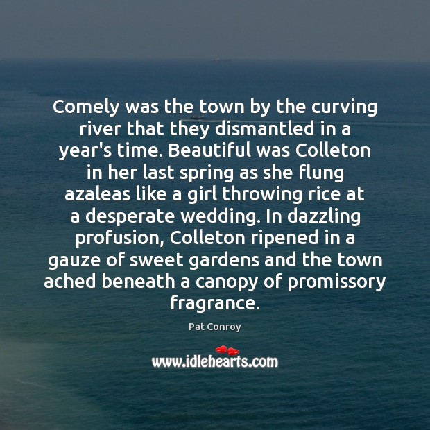 Comely was the town by the curving river that they dismantled in Pat Conroy Picture Quote