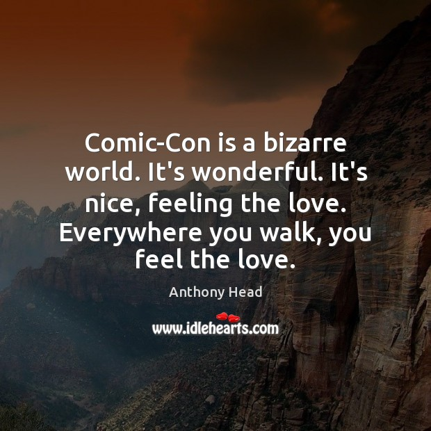 Image, Comic-Con is a bizarre world. It's wonderful. It's nice, feeling the love.