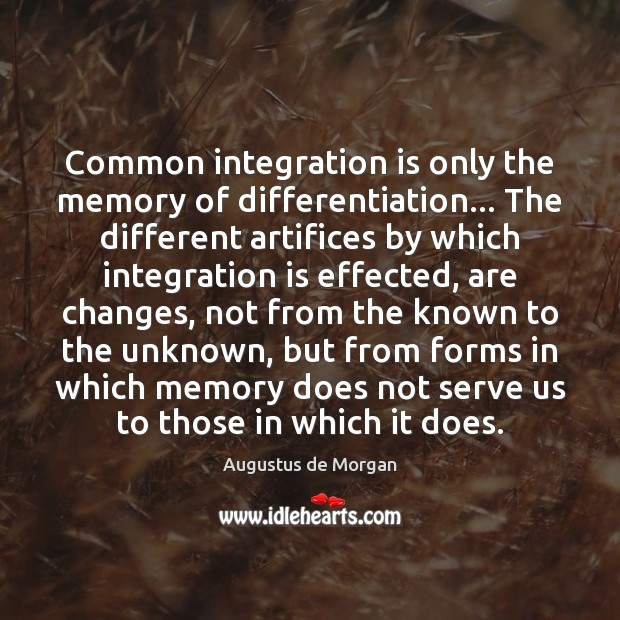 Common integration is only the memory of differentiation… The different artifices by Serve Quotes Image