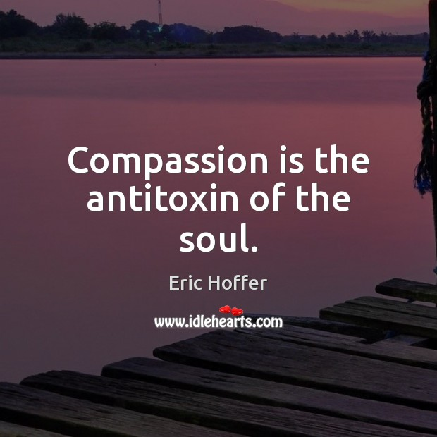 Compassion is the antitoxin of the soul. Image