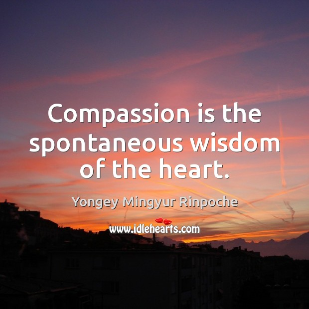 Compassion is the spontaneous wisdom of the heart. Compassion Quotes Image