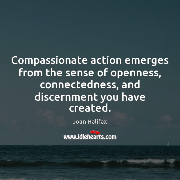 Compassionate action emerges from the sense of openness, connectedness, and discernment you Image