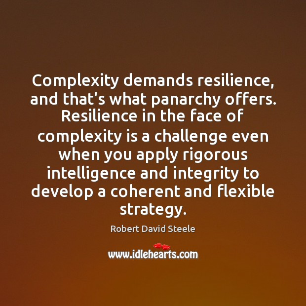 Image, Complexity demands resilience, and that's what panarchy offers. Resilience in the face