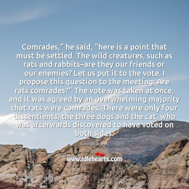 "Comrades,"" he said, ""here is a point that must be settled. The Image"