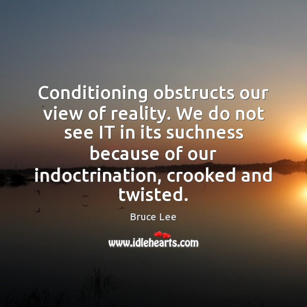 Image, Conditioning obstructs our view of reality. We do not see IT in