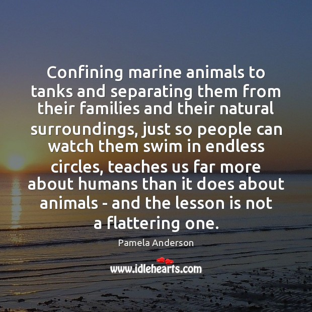 Confining marine animals to tanks and separating them from their families and Pamela Anderson Picture Quote