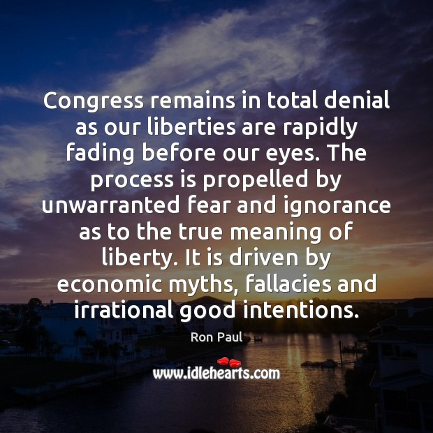 Image, Congress remains in total denial as our liberties are rapidly fading before