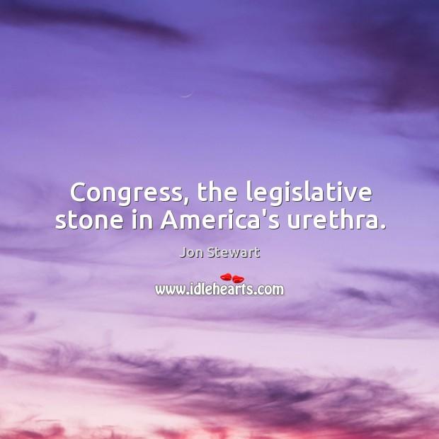 Congress, the legislative stone in America's urethra. Image