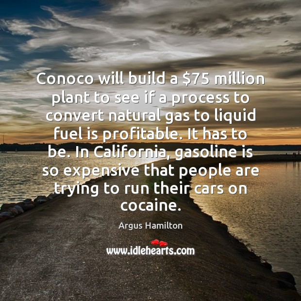 Conoco will build a $75 million plant to see if a process to Argus Hamilton Picture Quote