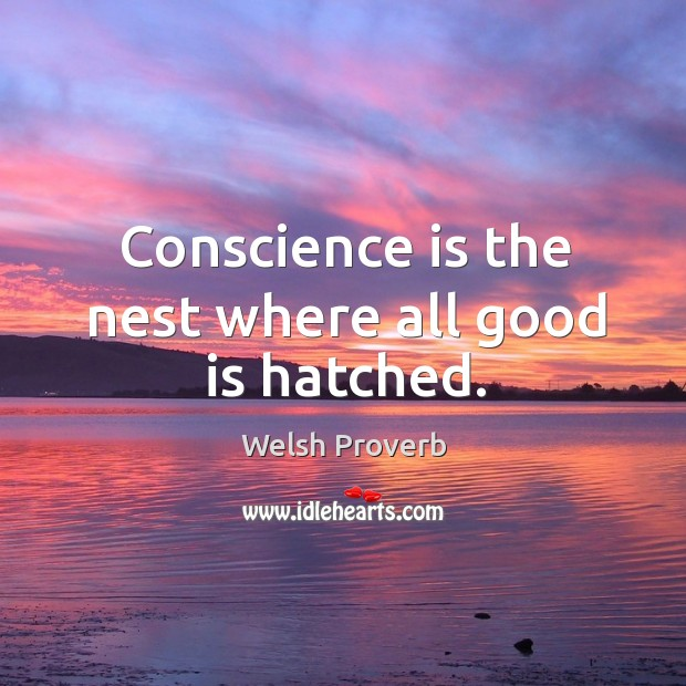 Image, Conscience is the nest where all good is hatched.